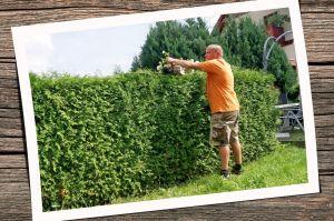 Grünflächenpflege_3